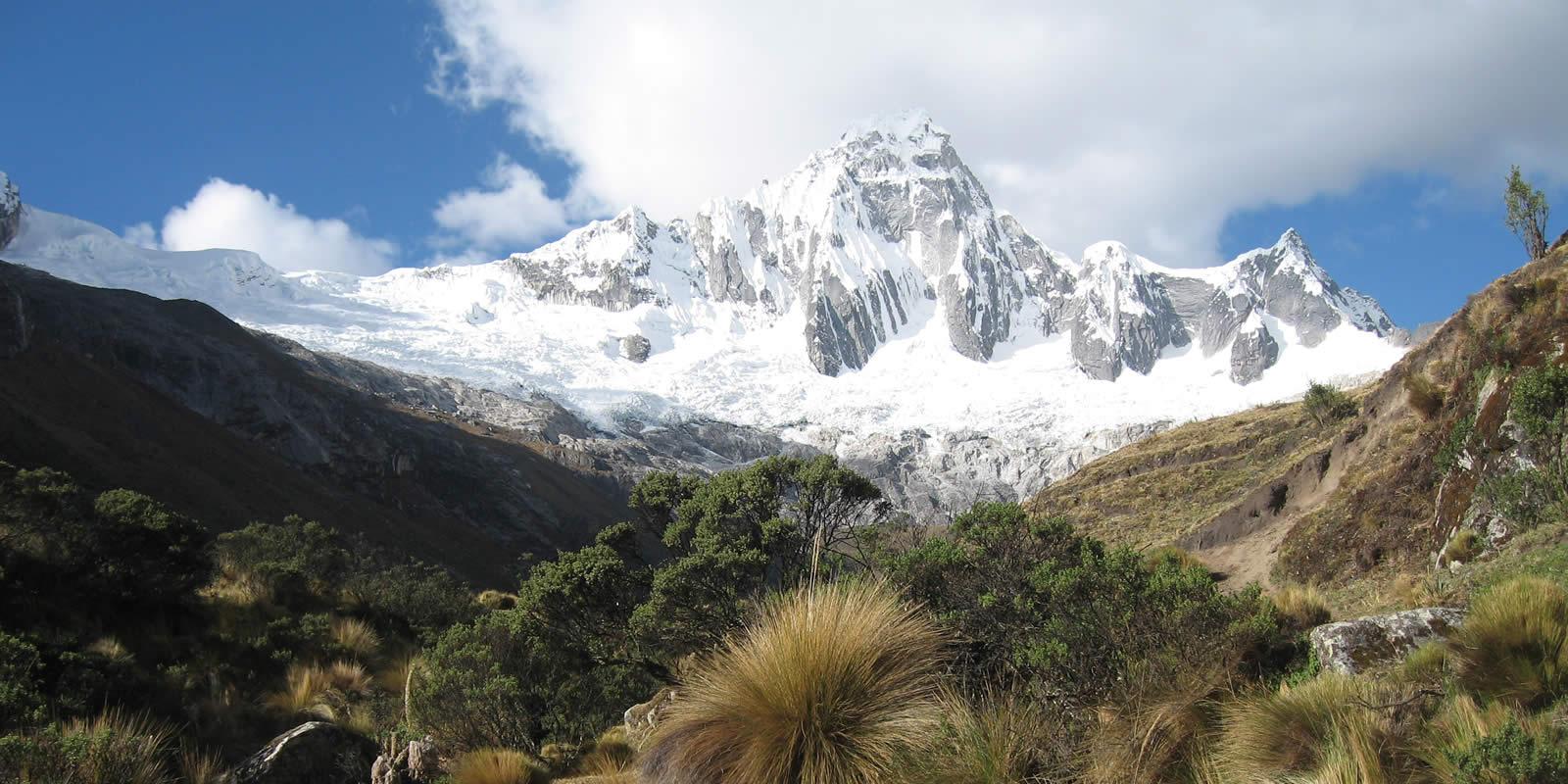 Andes Camping Expeditions Cedros-Alpamayo-Santa-Cruz